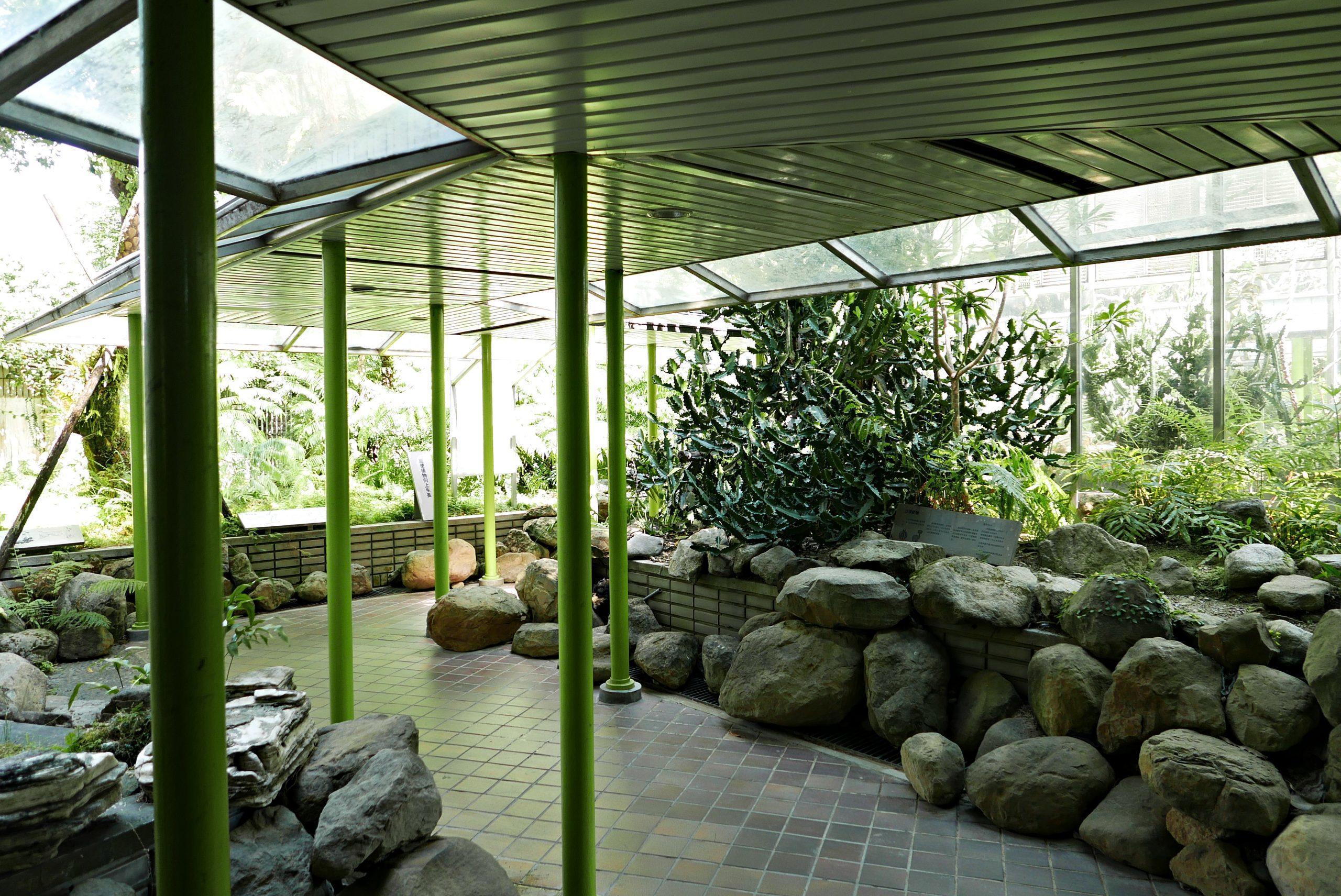台中科博館 室外植物園