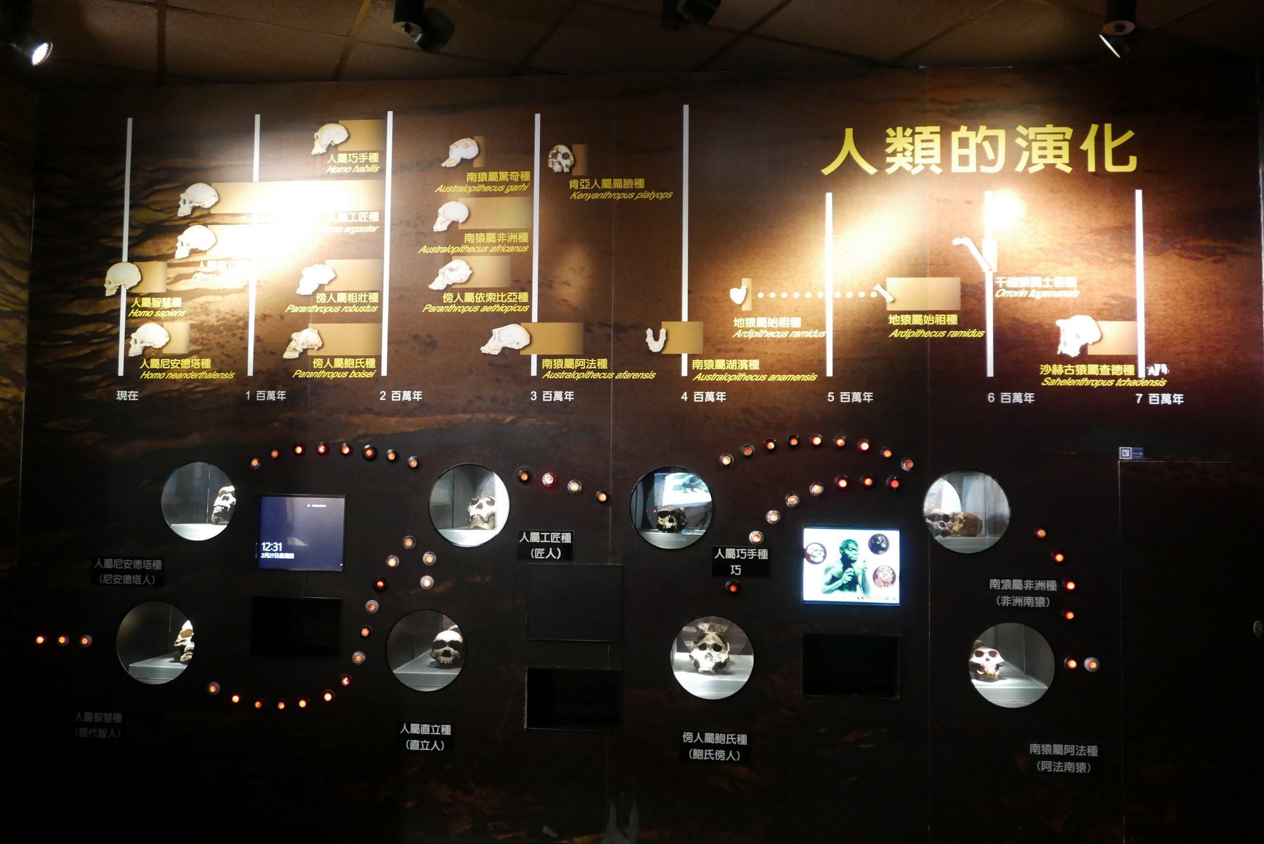 台中科博館 親子互動遊戲
